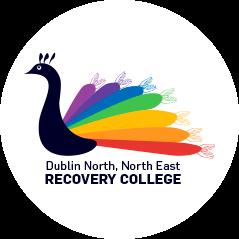 recovery college Irlanda